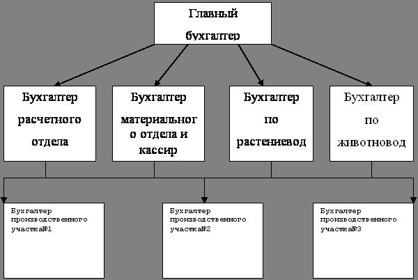 должностная инструкция бухгалтера оао ржд