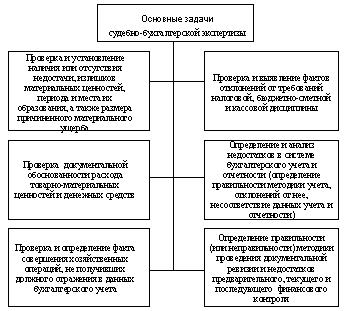 Объекты судебно бухгалтерской экспертизы реферат 3068